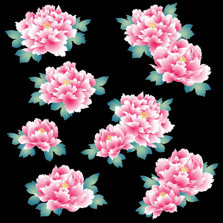 Design of a Japanese style peon flowerS  Vector illustration on black background.
