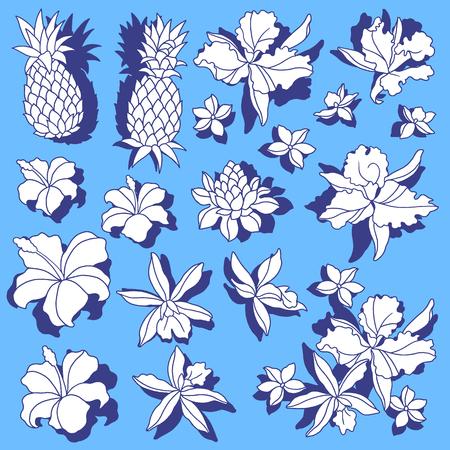 熱帯の花のイラストは、それを設計するための熱帯の花を描いた