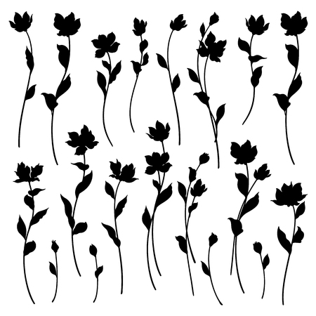 Flower illustration material Illustration