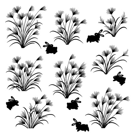 Illustration of a Japanese pampas grass and the rabbit, 矢量图像