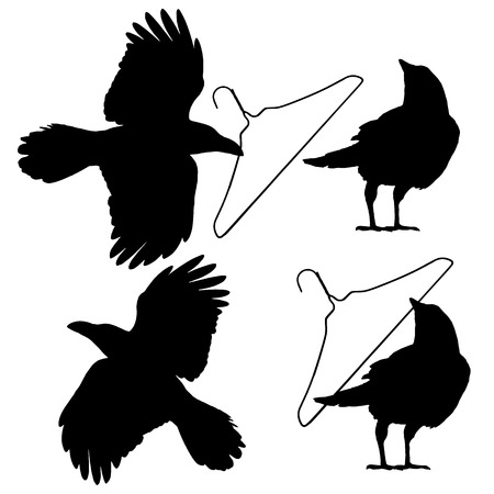 Illustration of the crow,