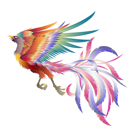 Illustration of the Chinese phoenix