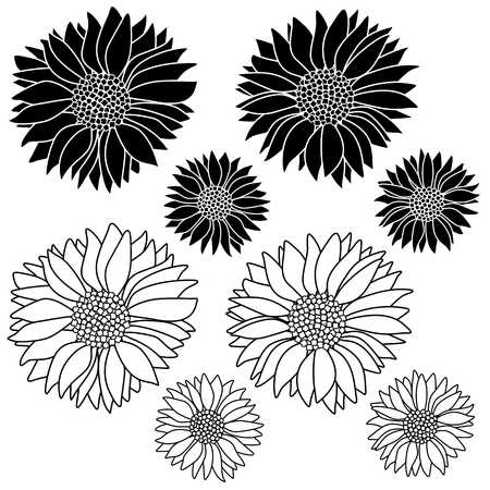 Illustration material of the flower