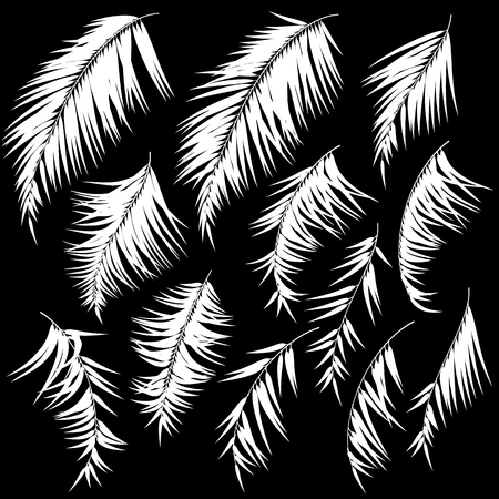 Tropical plant illustration material, Ilustração