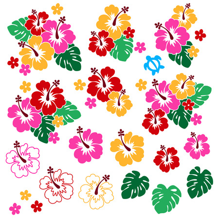 Pretty + Hibiscus + flower + material + illustration% 2C 向量圖像