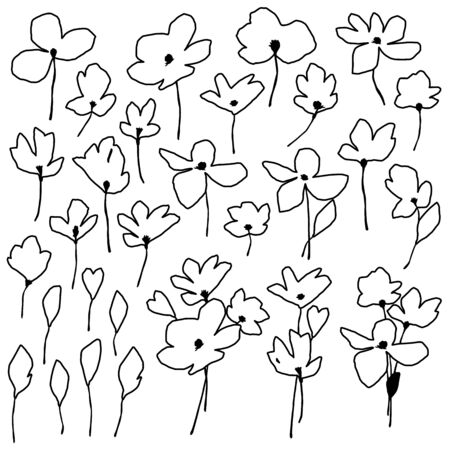 Flower vector illustration material abstract beautifully