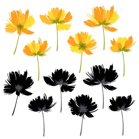 Flower vector illustration material abstract beautiful