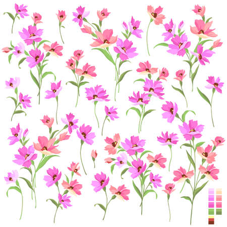 Beautiful flower illustration material collection, Illustration