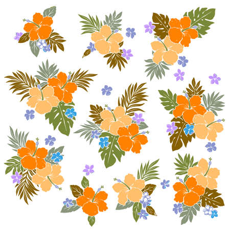 Tropical flower vector illustration material collection,