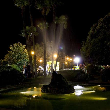 albero: Night fountain Stock Photo