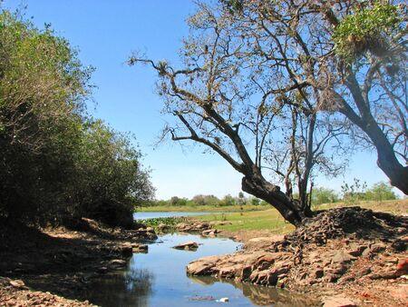 paraguay: Scenery in Manduvira River, Arroyos y Esteros District, Central, Paraguay.