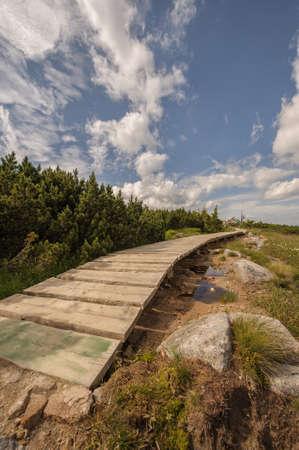 krkonose: Wooden bridge in Krkonose