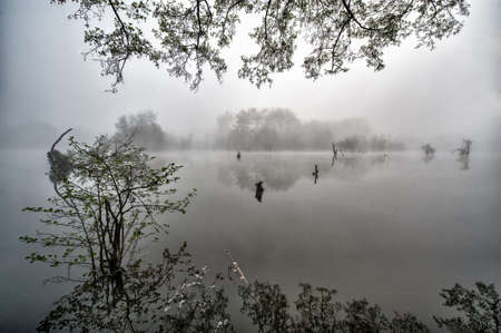 Morning misty lake Stock Photo