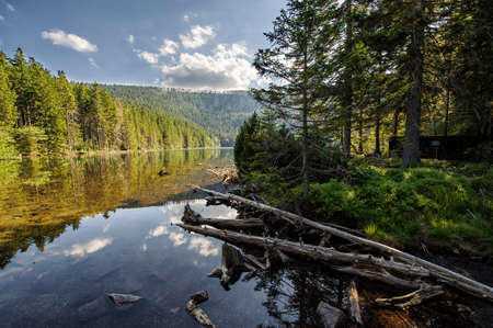 Sumava Stock Photo