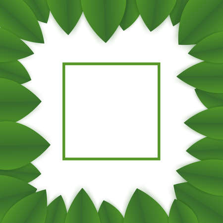 floral banner template. green leaves on white background. flyer for your advertisements. frame made of green petals