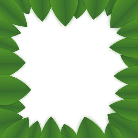floral banner template. green leaves on white background. flyer for your advertisments. frame made of green petals