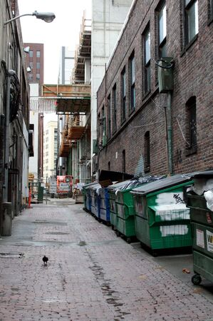 dumpster: A view down an urban back alley.