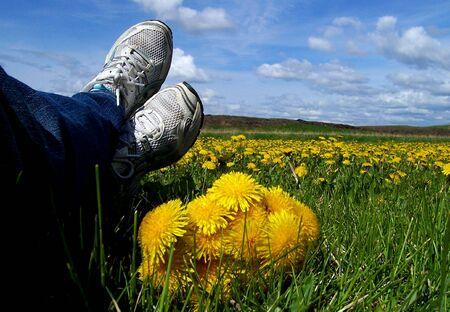 Una foto de los pies relajados patadas de vuelta con un ramo de dientes de león recién recogido y más flores en la distancia.  Foto de archivo