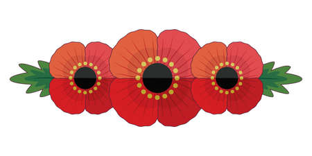 Retro style illustration with 3 red poppies and leaves. Cute floral banner for Remembrance Day and Anzac Day. Patriotic vector memorial element isolated on white for web, greeting card, social media..