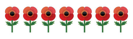 Retro style illustration of a row of red poppy flowers, isolated on white. Cute vector banner for Remembrance Day and Anzac Day. Patriotic memorial element for web, greeting card, social media.