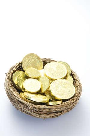 Gold Coins In Nest op witte achtergrond Stockfoto