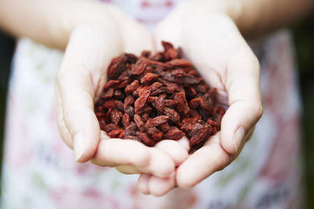 unrecognisable person: Woman Holding Goji Berries Stock Photo