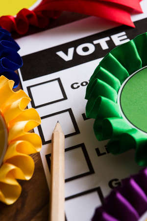 ballot paper: Selection Of Political Rossettes On Ballot Paper For Political Election Stock Photo