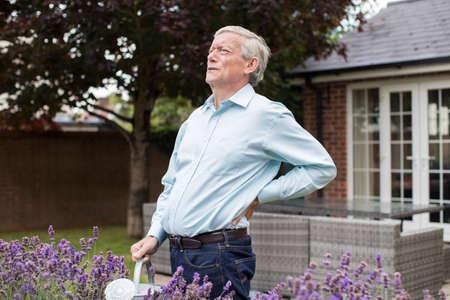 家で庭いじりをする間、腰痛で苦しんでいる中年の男性 写真素材