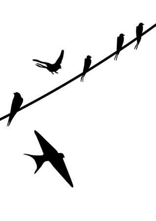 орнитология: Окрашенные силуэты птиц, сидящих на проводах Иллюстрация