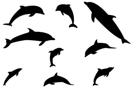 collection of silhouettes of dolphins in the vector Illustration