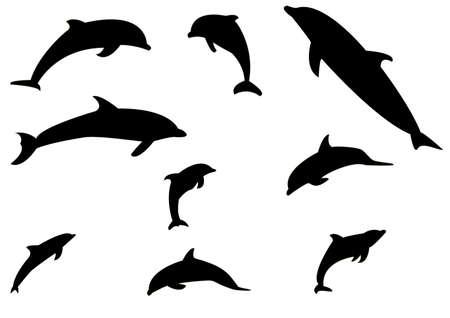 delfini: raccolta di sagome di delfini nel vettore