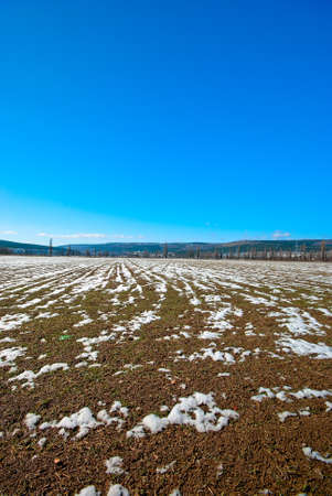 Early spring. Field of unmelted snow under the blue sky photo