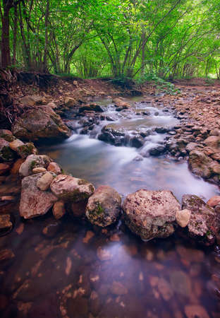 stock photos: Mountain forest river with rapids Stock Photo