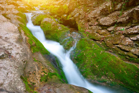 Early morning in the mountains. The picturesque mountain forest stream flowing between the rocks photo