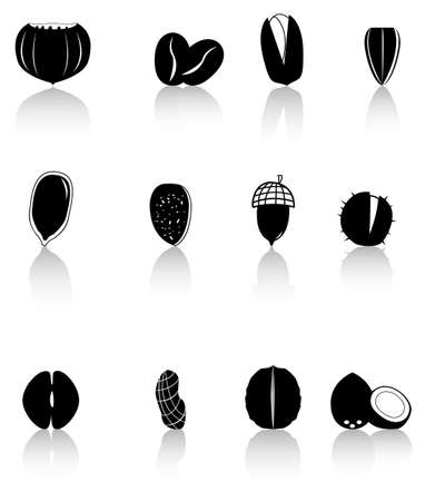 Icons - silhouettes of various kinds of nuts Vector