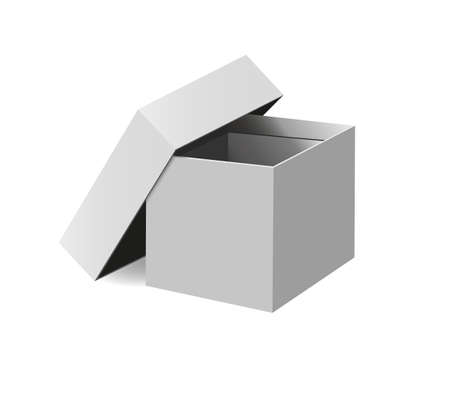 Open cardboard box on a white background Vector