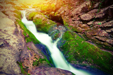 The picturesque mountain forest stream flowing between the rocks. Vintage style photo