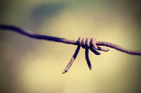 barbed wire. vintage style photo