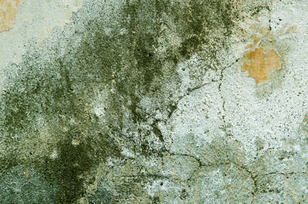 Several different green layers of plaster deposited on the wall. textural composition