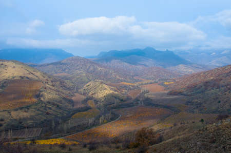Beautiful view from the mountains to the vineyards on an autumn afternoon. Natural composition Zdjęcie Seryjne
