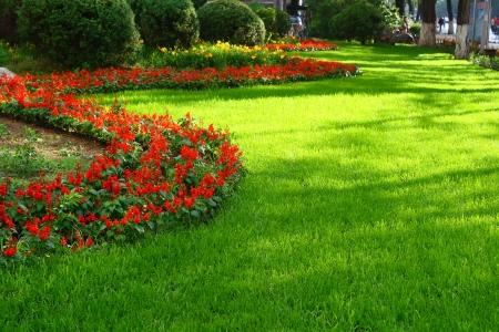 lawn Imagens
