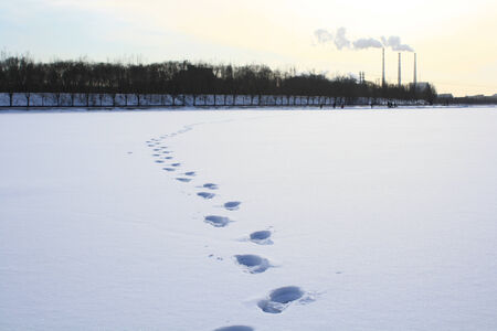 footmark: footprints in the snow