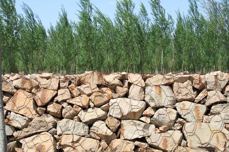 gabion: gabion wall