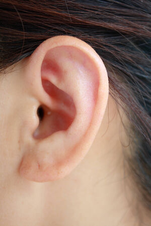 Human Ear photo