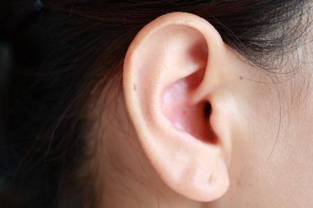 ohr: Menschliches Ohr