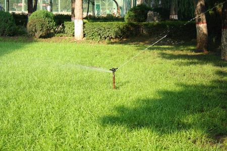 conservacion del agua: La aspersi�n del c�sped