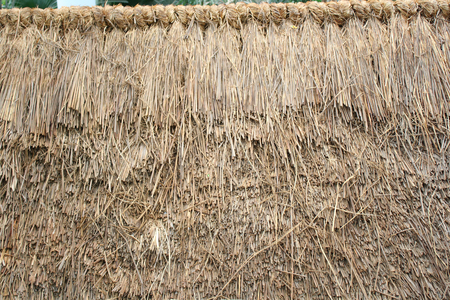thatched: Thatched background Stock Photo