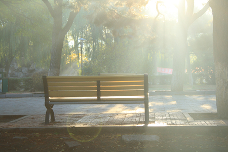 Park benches photo