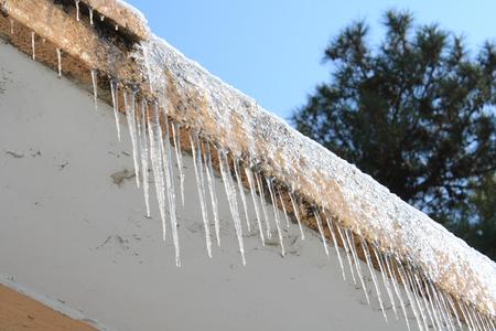Ice hanging photo