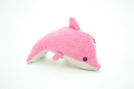 pink dolphin: Dolphin